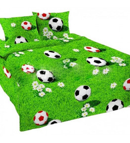 ***№77081 (футбольная поляна) 1,5 сп.